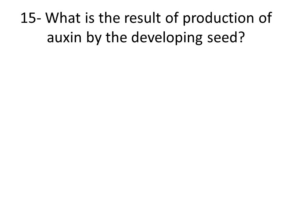 15- What is the result of production of auxin by the developing seed