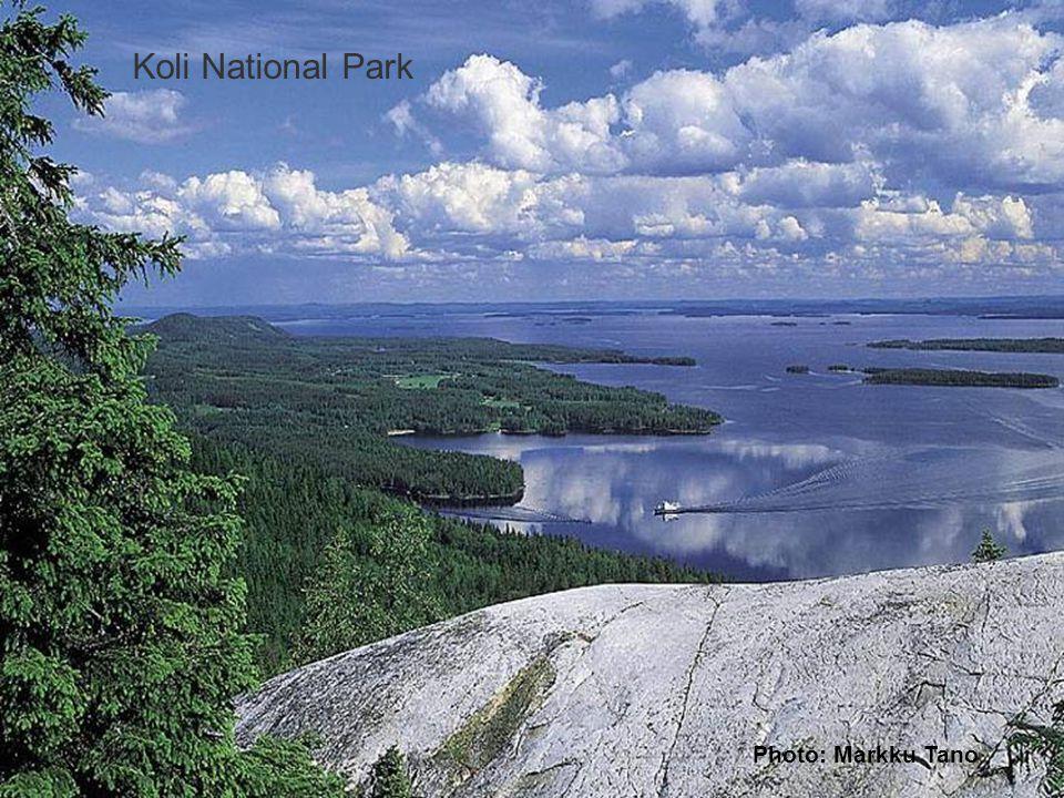 Forest, mires and lakes Photo: Markku Tano Koli National Park