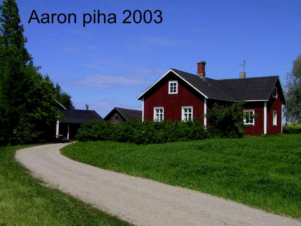 Aaron piha 2003