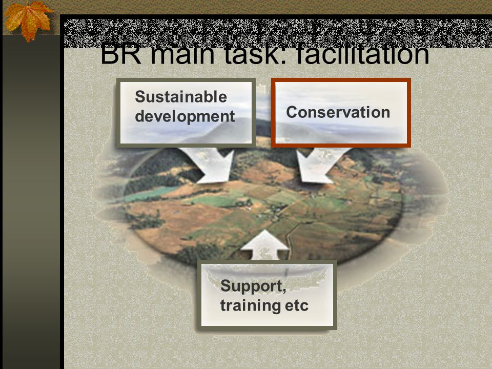 BR main task: facilitation Sustainable development Conservation Support, training etc