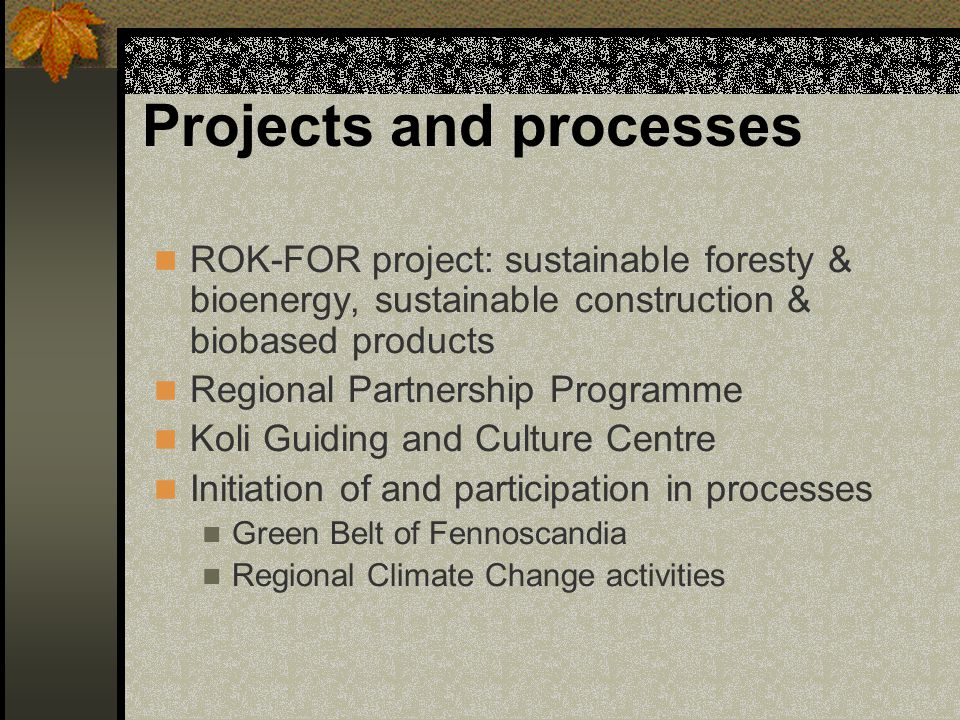 Projects and processes ROK-FOR project: sustainable foresty & bioenergy, sustainable construction & biobased products Regional Partnership Programme K