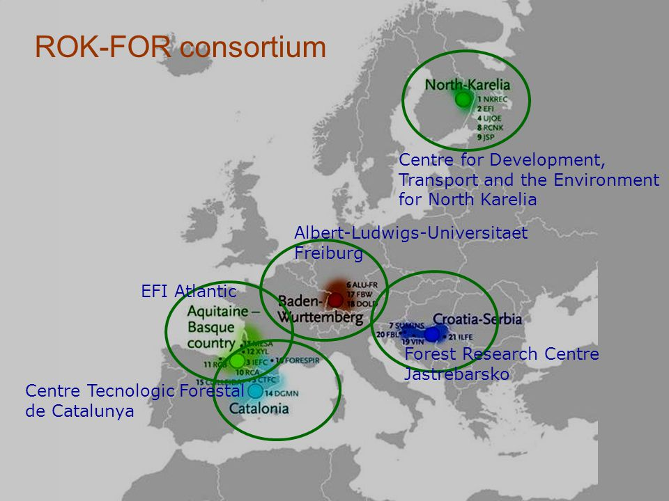 ROK-FOR consortium Forest Research Centre Jastrebarsko Centre for Development, Transport and the Environment for North Karelia Centre Tecnologic Fores