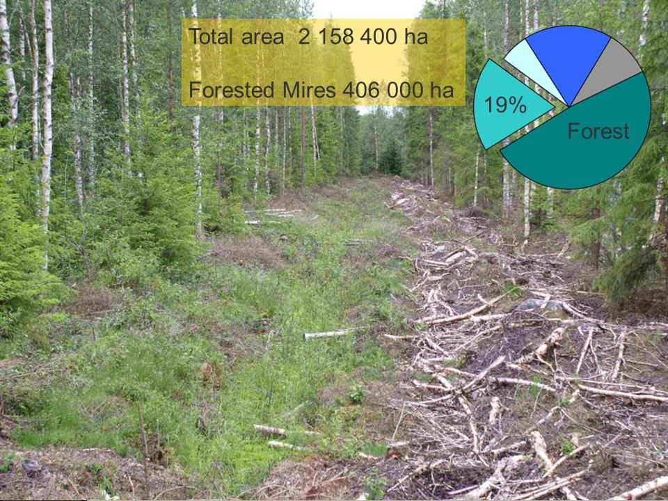 Total area 2 158 400 ha Forested Mires 406 000 ha 19% Forest