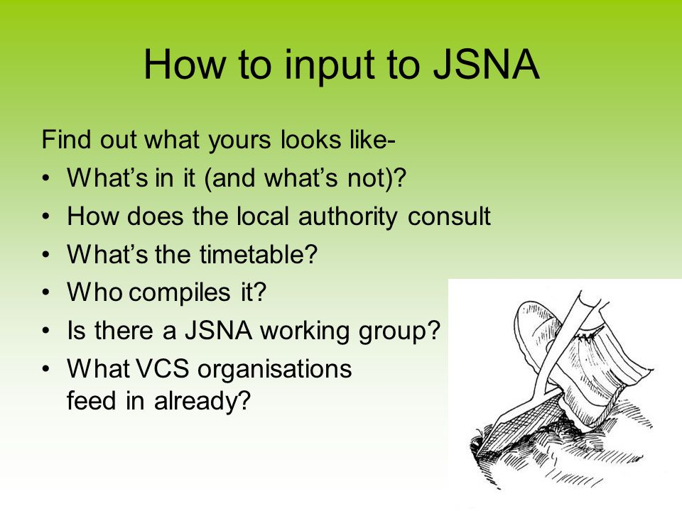 How to input to JSNA Find out what yours looks like- What's in it (and what's not).