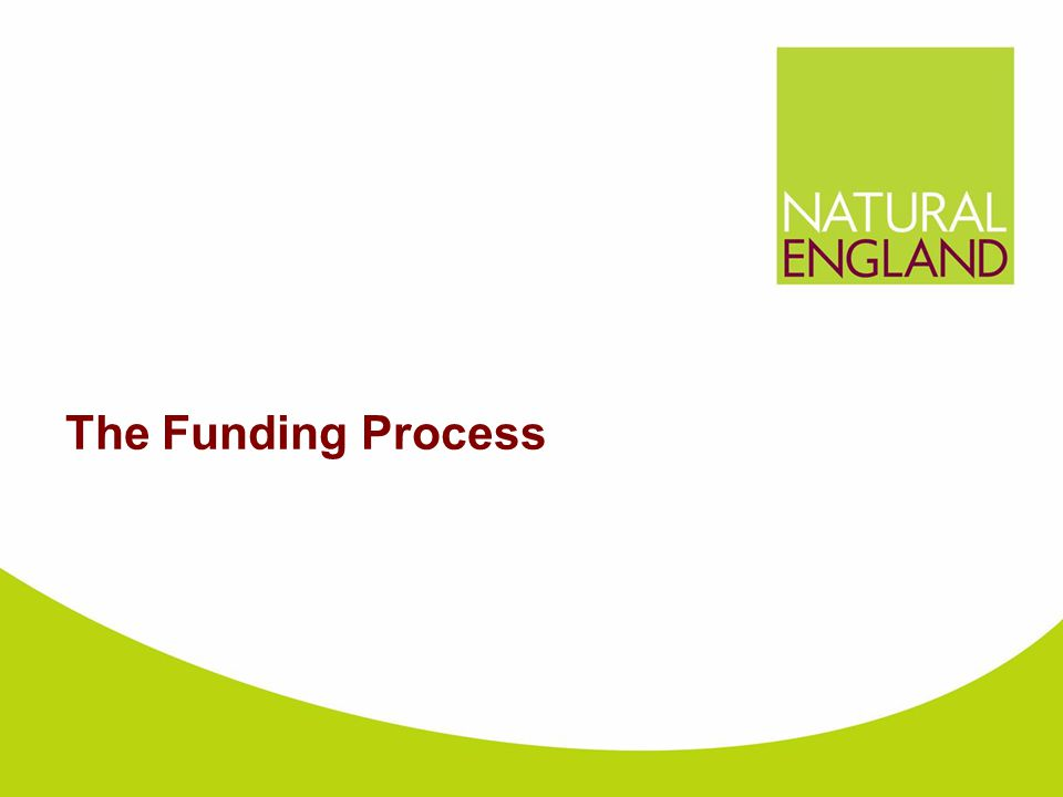 The Funding Process
