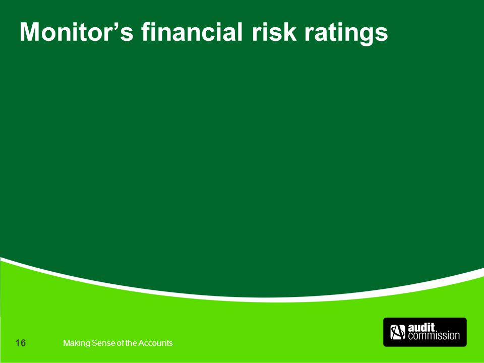 Making Sense of the Accounts 16 Monitor's financial risk ratings