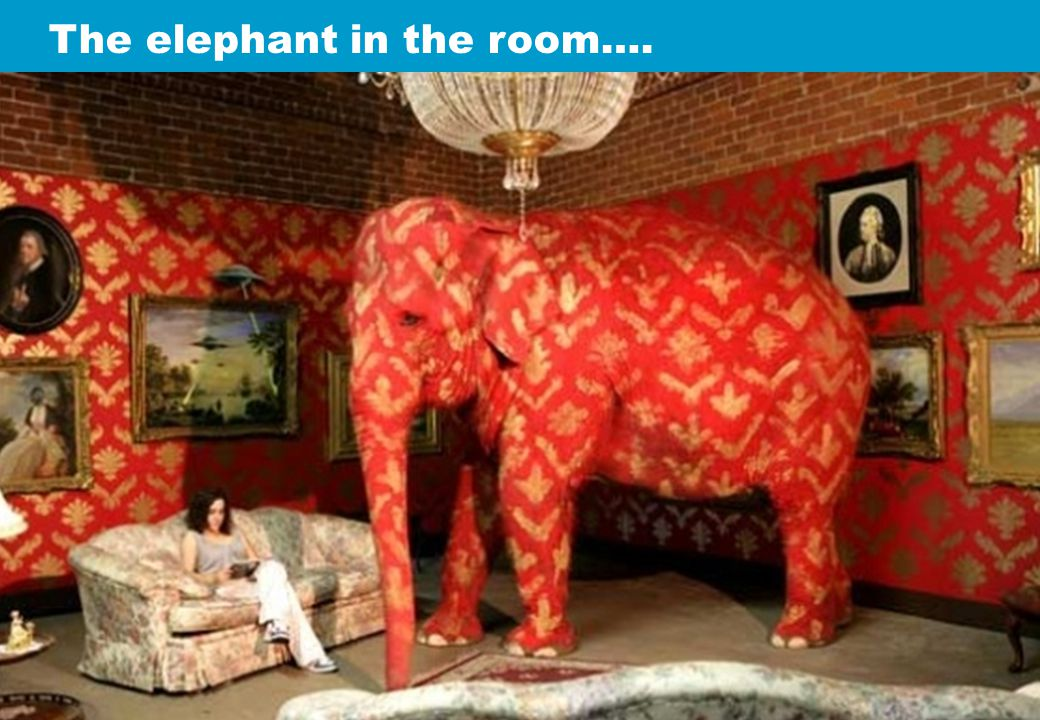 The elephant in the room….