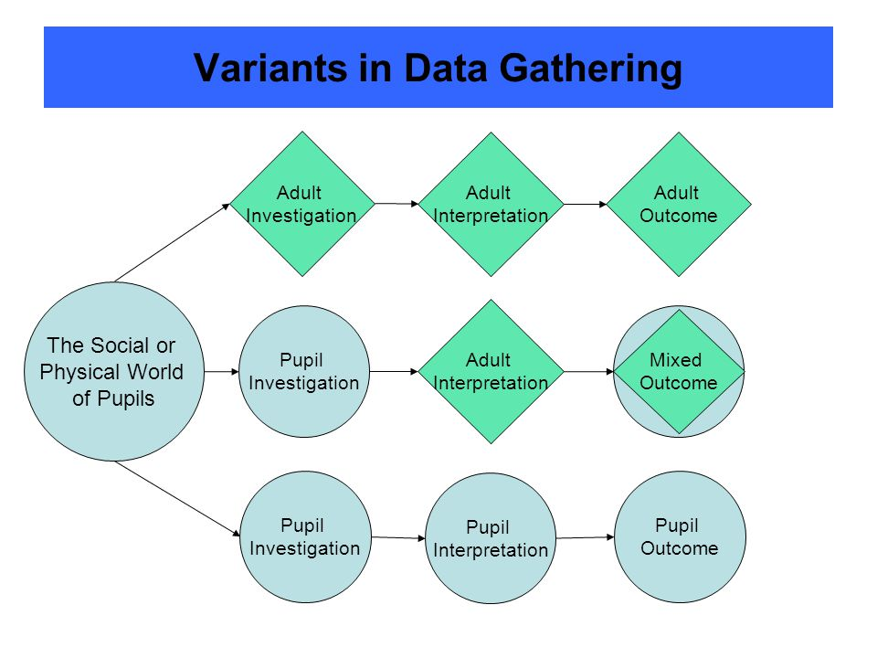 Variants in Data Gathering Pupil Investigation Pupil Interpretation Pupil Investigation Adult Investigation Pupil Outcome Mixed Outcome The Social or Physical World of Pupils Adult Outcome Adult Interpretation Adult Interpretation