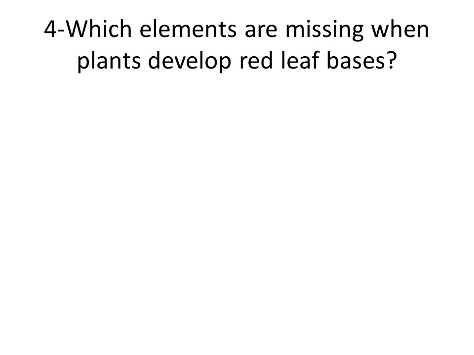 4-Which elements are missing when plants develop red leaf bases?