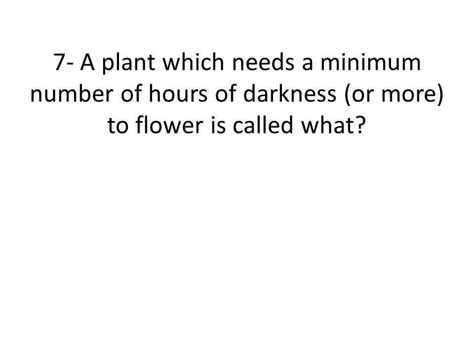 7- A plant which needs a minimum number of hours of darkness (or more) to flower is called what?