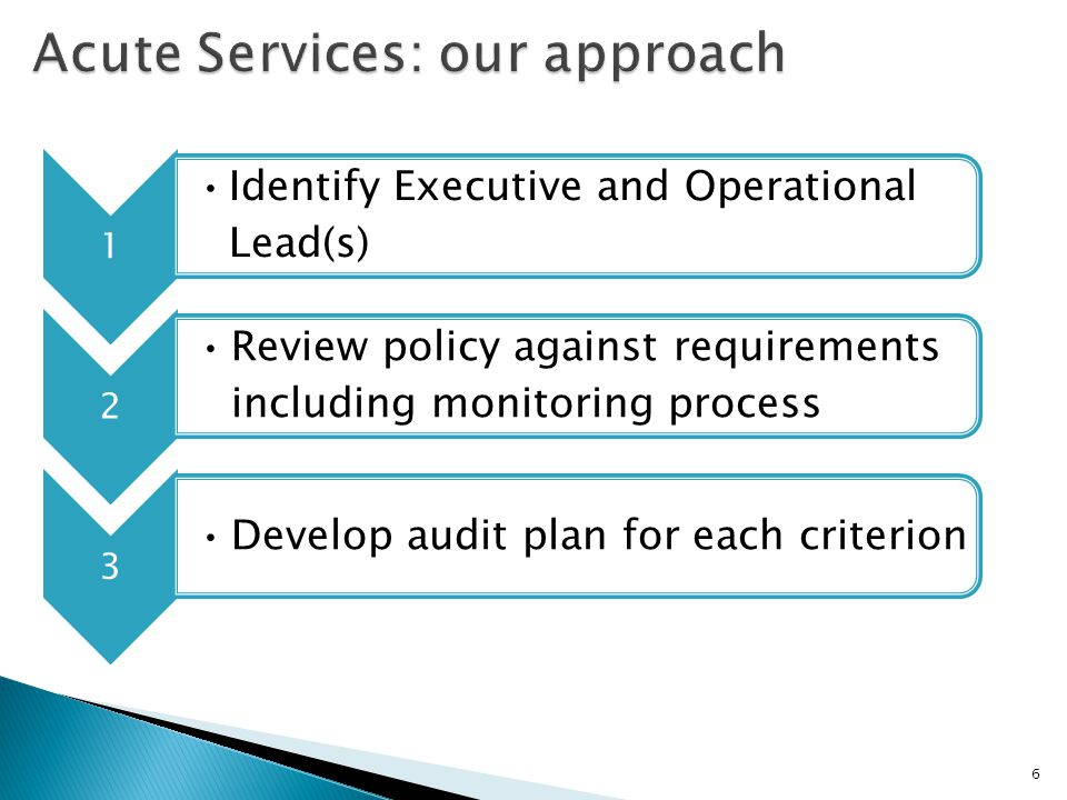 4 Audit findings reported to identified committee 5 Action plan developed to address any deficiencies 6 Progress monitored at subsequent meetings until closed 7