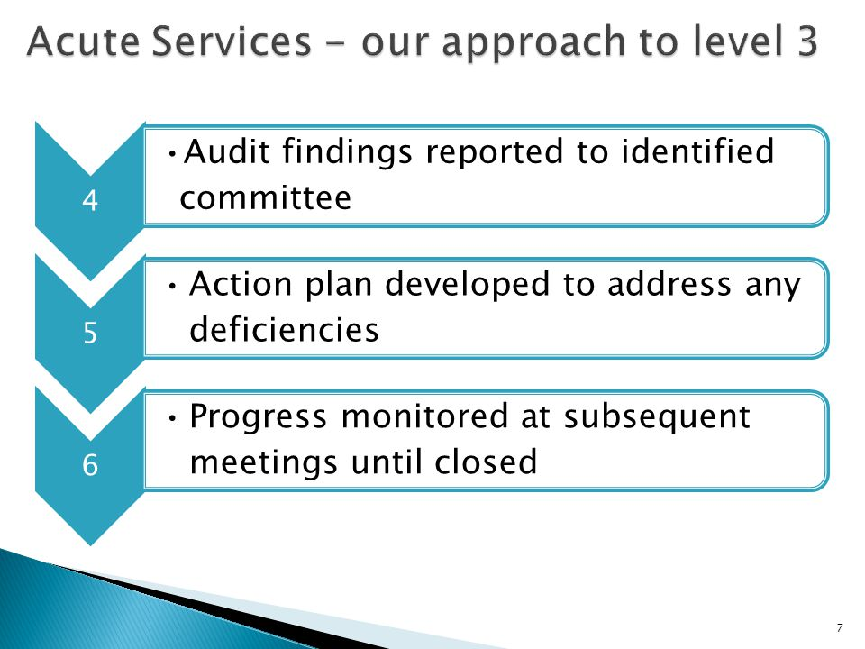 4 Audit findings reported to identified committee 5 Action plan developed to address any deficiencies 6 Progress monitored at subsequent meetings unti