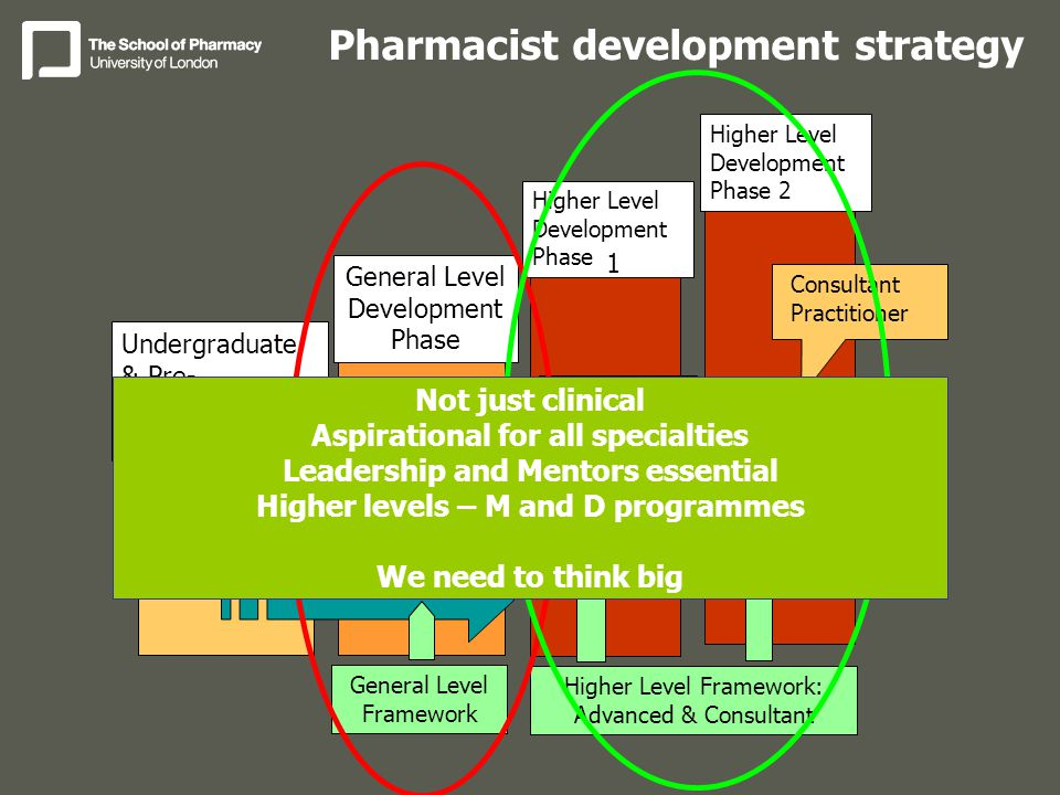 Higher Level Development Phase General Level Development Phase Undergraduate & Pre- registration Phases General Level Practitioner Advanced Practitioner & PhwSI Higher Level Development Phase 2 1 Consultant Practitioner General Level Framework Higher Level Framework: Advanced & Consultant Pharmacist development strategy Not just clinical Aspirational for all specialties Leadership and Mentors essential Higher levels – M and D programmes We need to think big