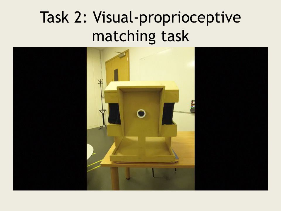 Task 2: Visual-proprioceptive matching task