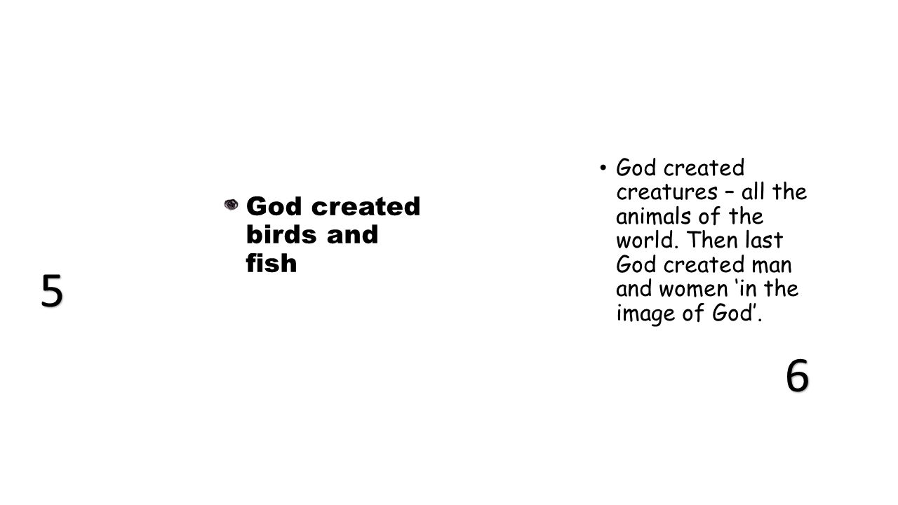 God created birds and fish God created creatures – all the animals of the world.