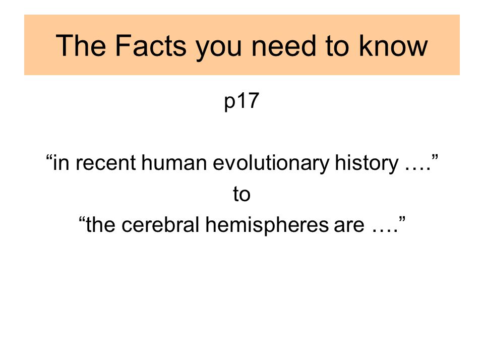The Facts you need to know p17 in recent human evolutionary history …. to the cerebral hemispheres are ….