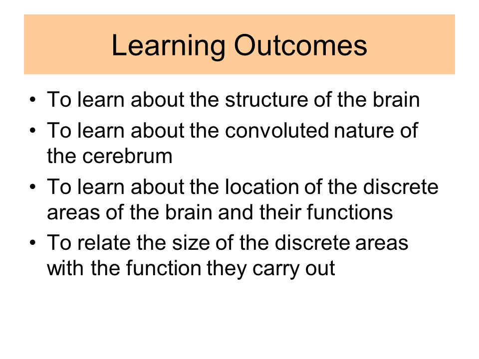 Learning Outcomes To learn about the structure of the brain To learn about the convoluted nature of the cerebrum To learn about the location of the discrete areas of the brain and their functions To relate the size of the discrete areas with the function they carry out