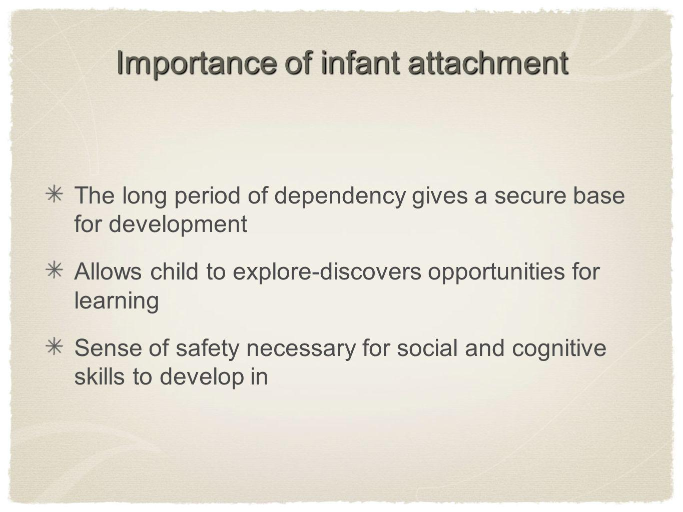Importance of infant attachment The long period of dependency gives a secure base for development Allows child to explore-discovers opportunities for learning Sense of safety necessary for social and cognitive skills to develop in