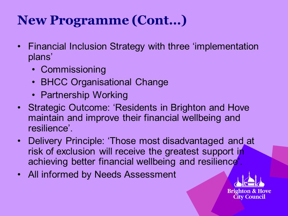 New Programme (Cont…) Financial Inclusion Strategy with three 'implementation plans' Commissioning BHCC Organisational Change Partnership Working Strategic Outcome: 'Residents in Brighton and Hove maintain and improve their financial wellbeing and resilience'.