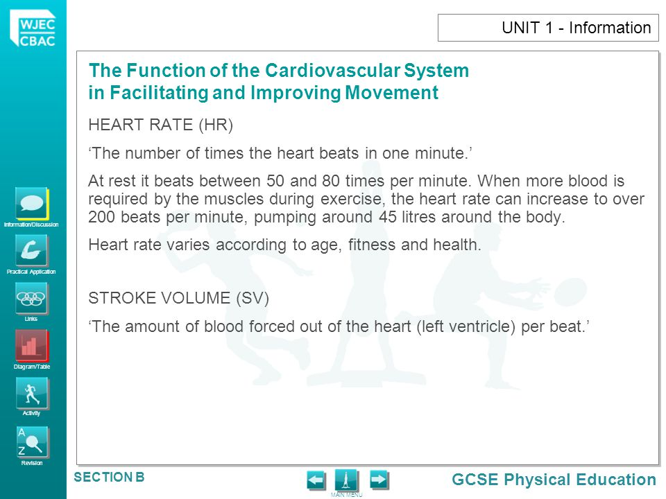 Information/Discussion Practical Application Links Diagram/Table Activity Revision GCSE Physical Education The Function of the Cardiovascular System in Facilitating and Improving Movement MAIN MENU SECTION B UNIT 1 - Information CARDIAC OUTPUT (CO) 'The amount of blood pumped out of the heart (left ventricle) in one minute.' Cardiac output varies depending on the intensity of the exercise and the fitness levels of the person.