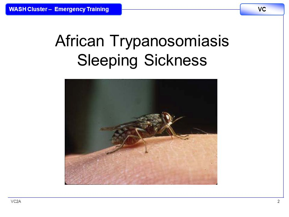 VC2A VC WASH Cluster – Emergency Training 2 African Trypanosomiasis Sleeping Sickness
