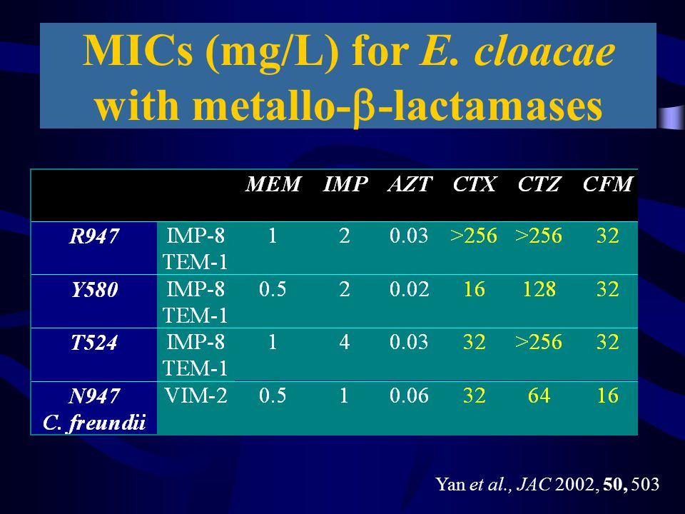 MICs (mg/L) for E. cloacae with metallo-  -lactamases Yan et al., JAC 2002, 50, 503