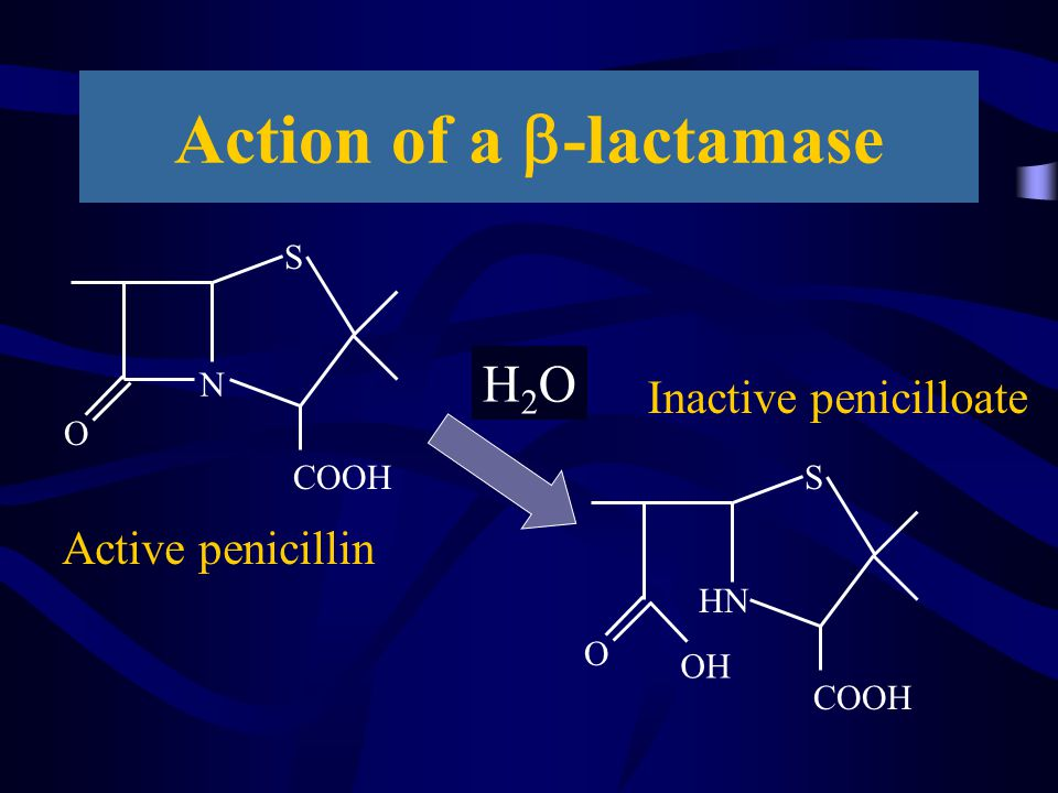 The message Beta-lactamases are getting more complex Full I/D needs complex molecular methods Much can be inferred from simple tests.