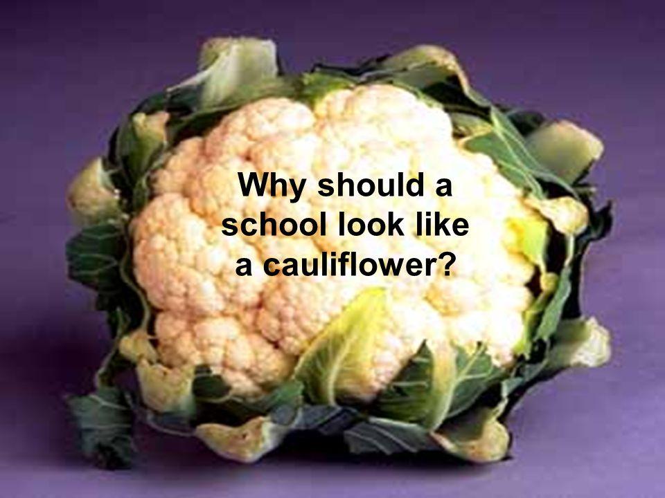Why should a school look like a cauliflower