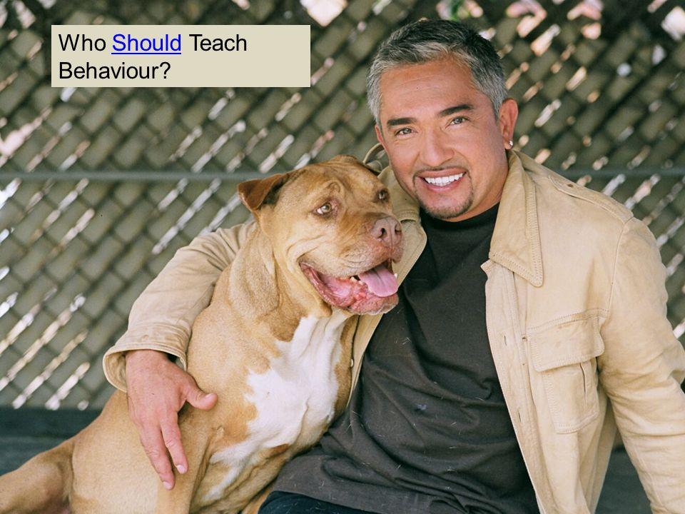 Who Should Teach Behaviour?Should