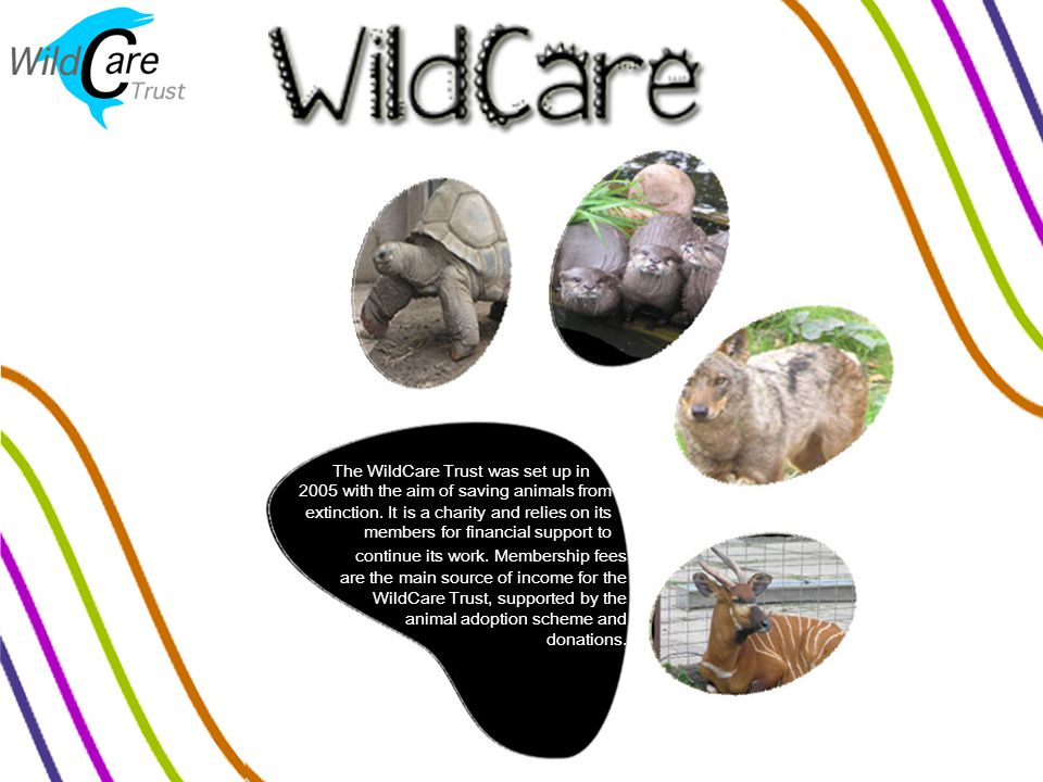 The WildCare Trust was set up in 2005 with the aim of saving animals from extinction.
