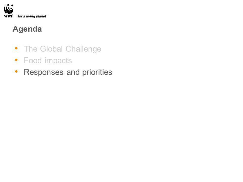 Agenda The Global Challenge Food impacts Responses and priorities