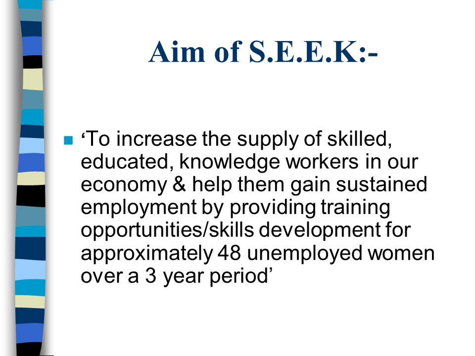 Aim of S.E.E.K:- ' To increase the supply of skilled, educated, knowledge workers in our economy & help them gain sustained employment by providing training opportunities/skills development for approximately 48 unemployed women over a 3 year period'