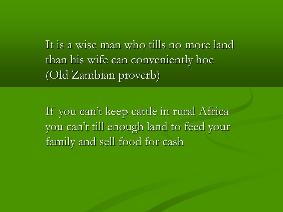 It is a wise man who tills no more land than his wife can conveniently hoe (Old Zambian proverb) If you can't keep cattle in rural Africa you can't till enough land to feed your family and sell food for cash