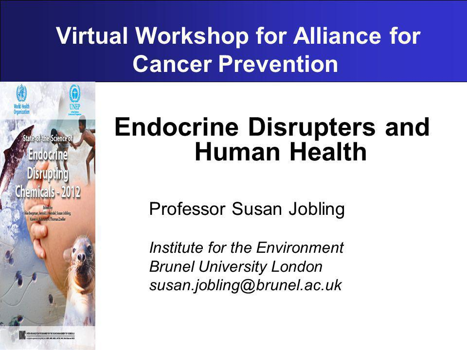 Virtual Workshop for Alliance for Cancer Prevention Endocrine Disrupters and Human Health Professor Susan Jobling Institute for the Environment Brunel University London susan.jobling@brunel.ac.uk