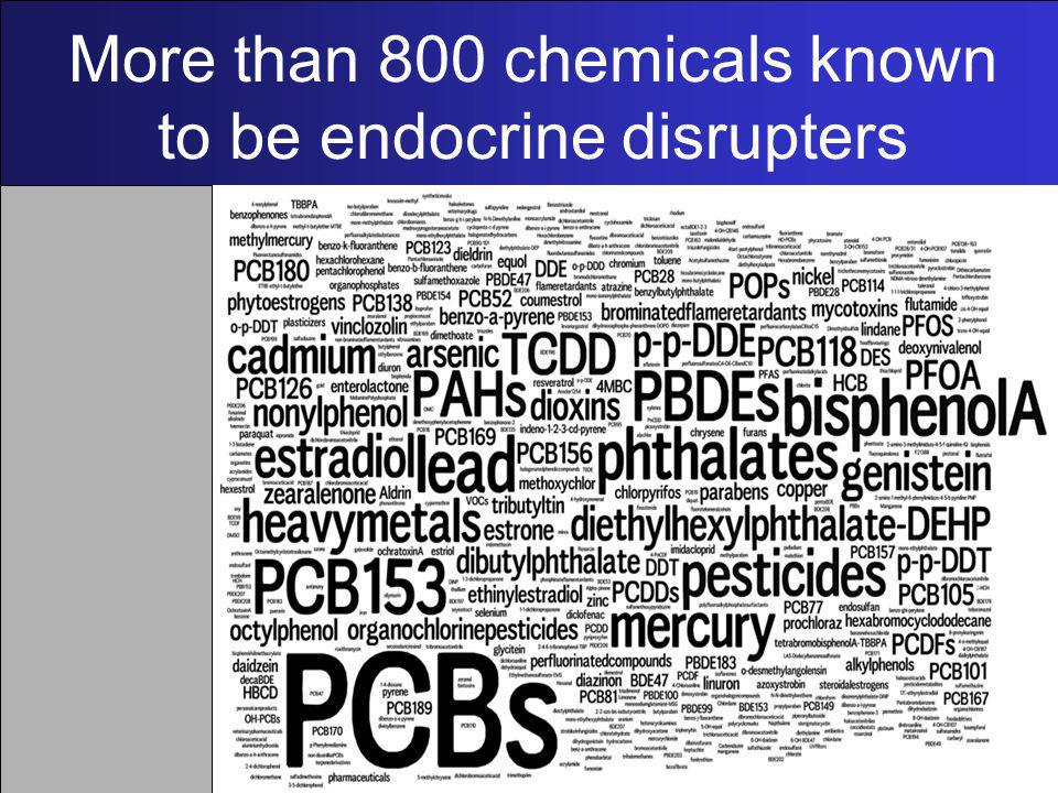 More than 800 chemicals known to be endocrine disrupters