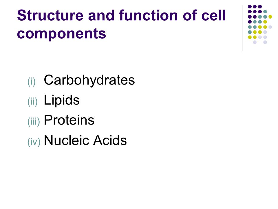 Structure and function of cell components (i) Carbohydrates (ii) Lipids (iii) Proteins (iv) Nucleic Acids