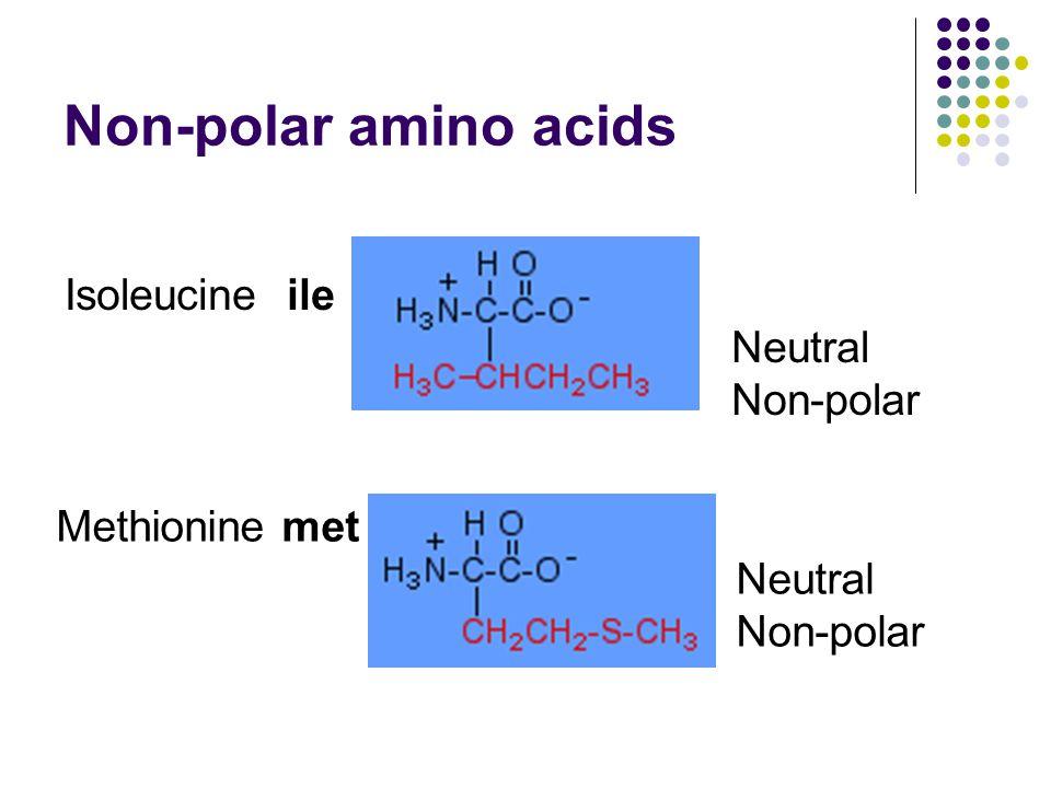 Non-polar amino acids Isoleucine ile Neutral Non-polar Methionine met Neutral Non-polar