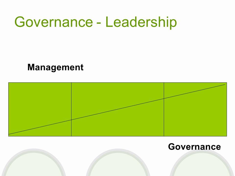 Governance - Leadership Management Governance