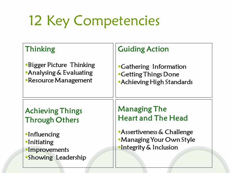 12 Key Competencies Thinking  Bigger Picture Thinking  Analysing & Evaluating  Resource Management Guiding Action  Gathering Information  Getting Things Done  Achieving High Standards Achieving Things Through Others  Influencing  Initiating  Improvements  Showing Leadership Managing The Heart and The Head  Assertiveness & Challenge  Managing Your Own Style  Integrity & Inclusion