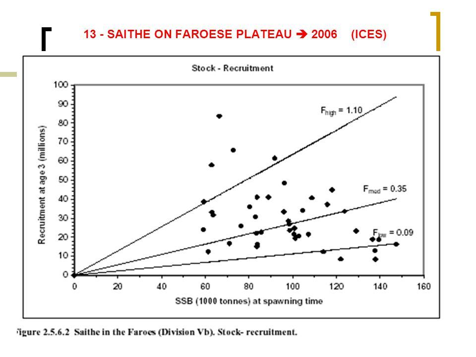 13 - SAITHE ON FAROESE PLATEAU  2006 (ICES)