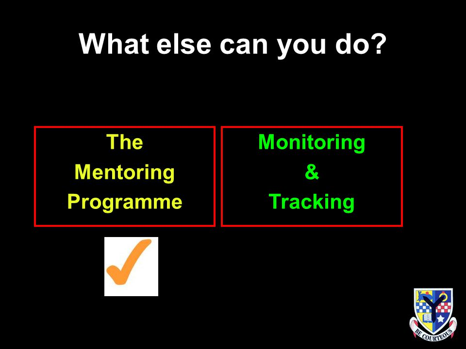 What else can you do The Mentoring Programme Monitoring & Tracking
