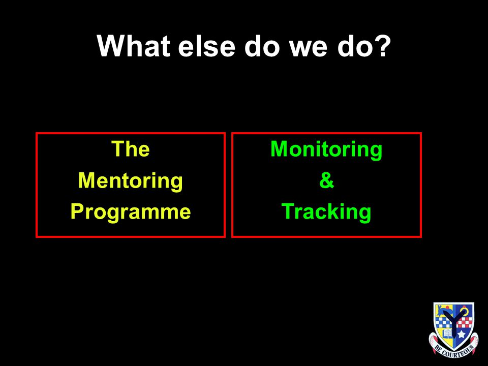What else do we do The Mentoring Programme Monitoring & Tracking