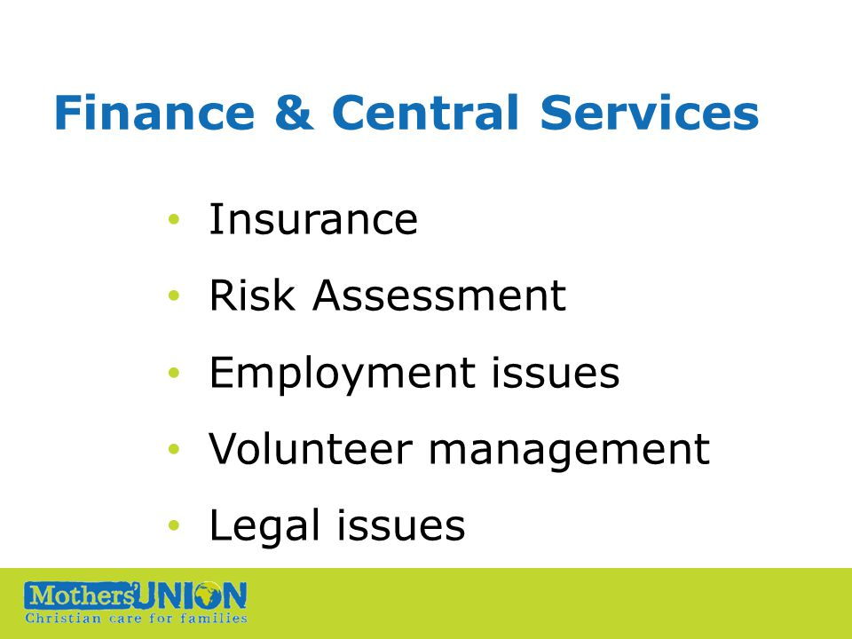 Finance & Central Services Insurance Risk Assessment Employment issues Volunteer management Legal issues