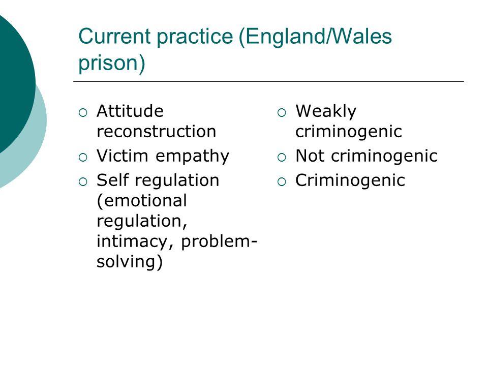 Current practice (England/Wales prison)  Attitude reconstruction  Victim empathy  Self regulation (emotional regulation, intimacy, problem- solving)  Weakly criminogenic  Not criminogenic  Criminogenic