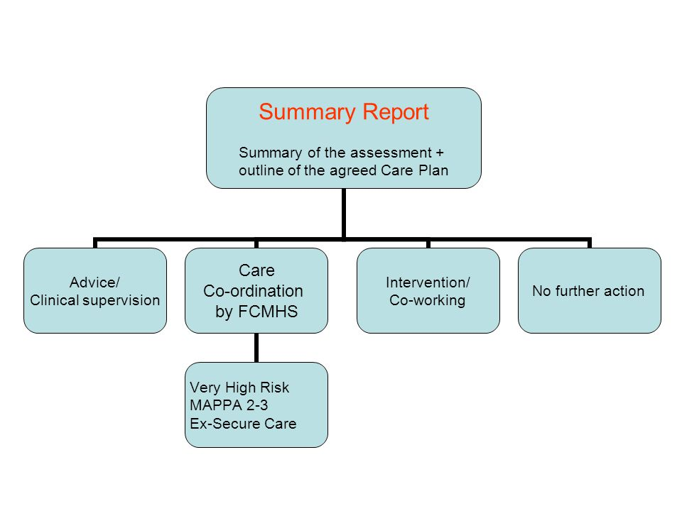 Summary Report Summary of the assessment + outline of the agreed Care Plan Advice/ Clinical supervision Care Co-ordination by FCMHS Very High Risk MAPPA 2-3 Ex-Secure Care Intervention/ Co-working No further action