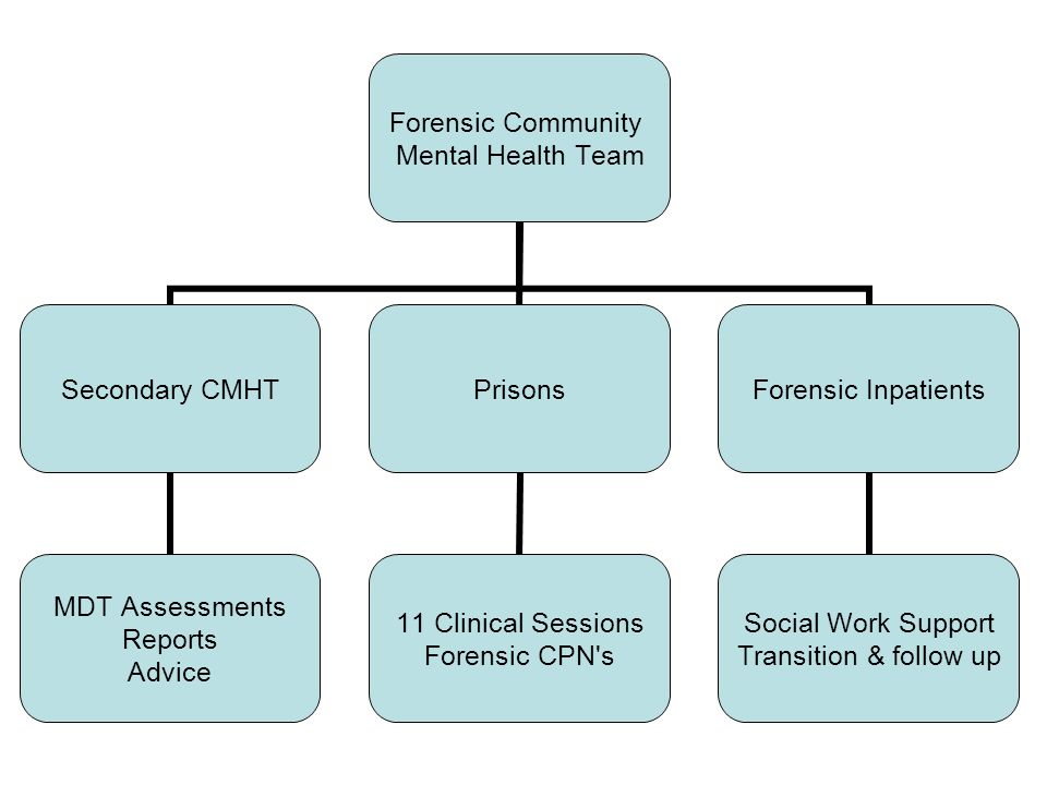 Forensic Community Mental Health Team Secondary CMHT MDT Assessments Reports Advice Prisons 11 Clinical Sessions Forensic CPN s Forensic Inpatients Social Work Support Transition & follow up