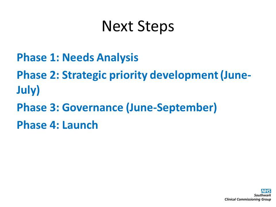 Next Steps Phase 1: Needs Analysis Phase 2: Strategic priority development (June- July) Phase 3: Governance (June-September) Phase 4: Launch