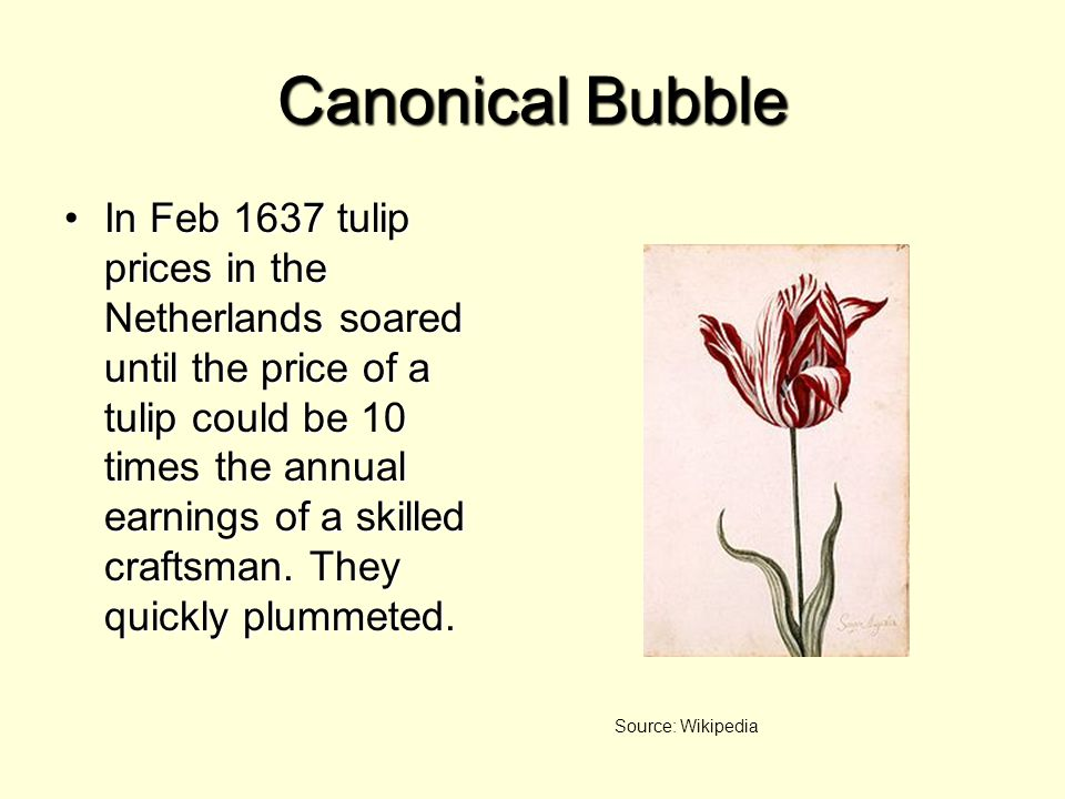 Canonical Bubble In Feb 1637 tulip prices in the Netherlands soared until the price of a tulip could be 10 times the annual earnings of a skilled craftsman.