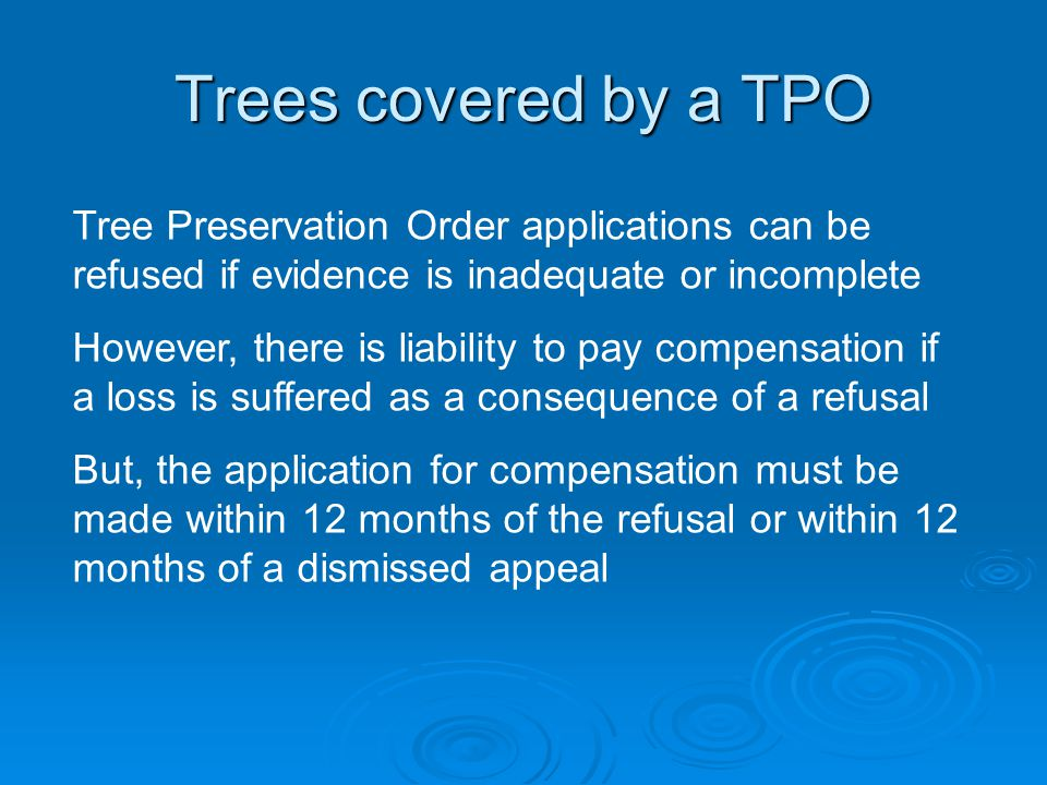 Tree Preservation Order applications can be refused if evidence is inadequate or incomplete However, there is liability to pay compensation if a loss is suffered as a consequence of a refusal But, the application for compensation must be made within 12 months of the refusal or within 12 months of a dismissed appeal