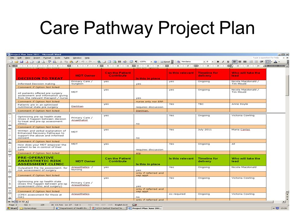 Care Pathway Project Plan